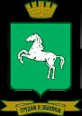 Администрация г. Томска